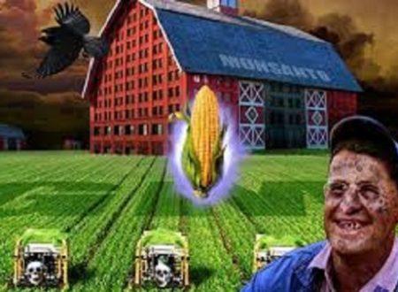 Monsanto e cancro: un binomio ufficiale
